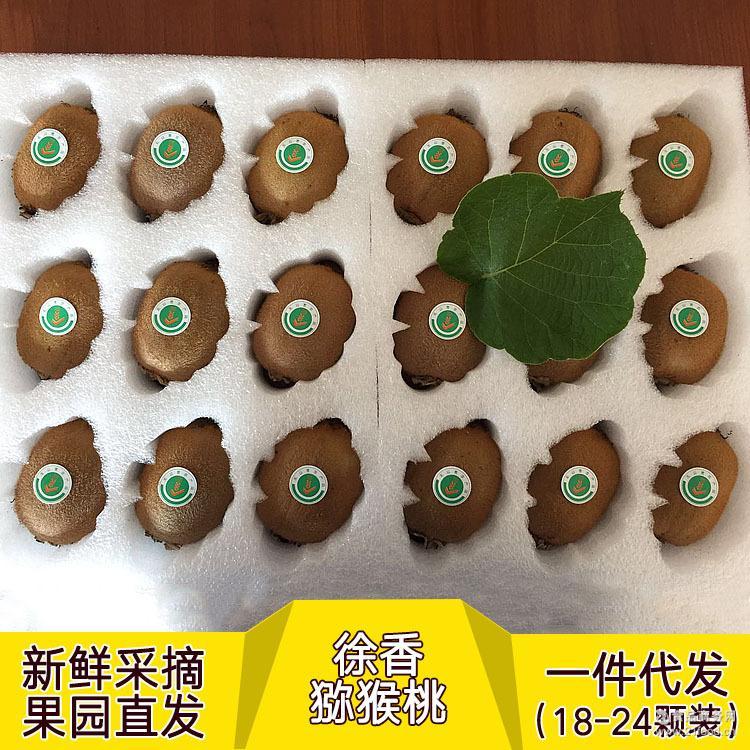 一件代发 望仙果蔬陕西户县徐香猕猴桃果园直发新鲜直达