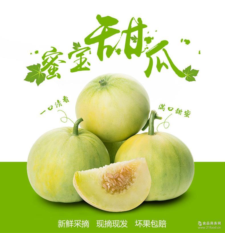 明年产地直发青岛莱西新鲜孕妇时令水果蜜宝王甜宝甜瓜4斤 已下市