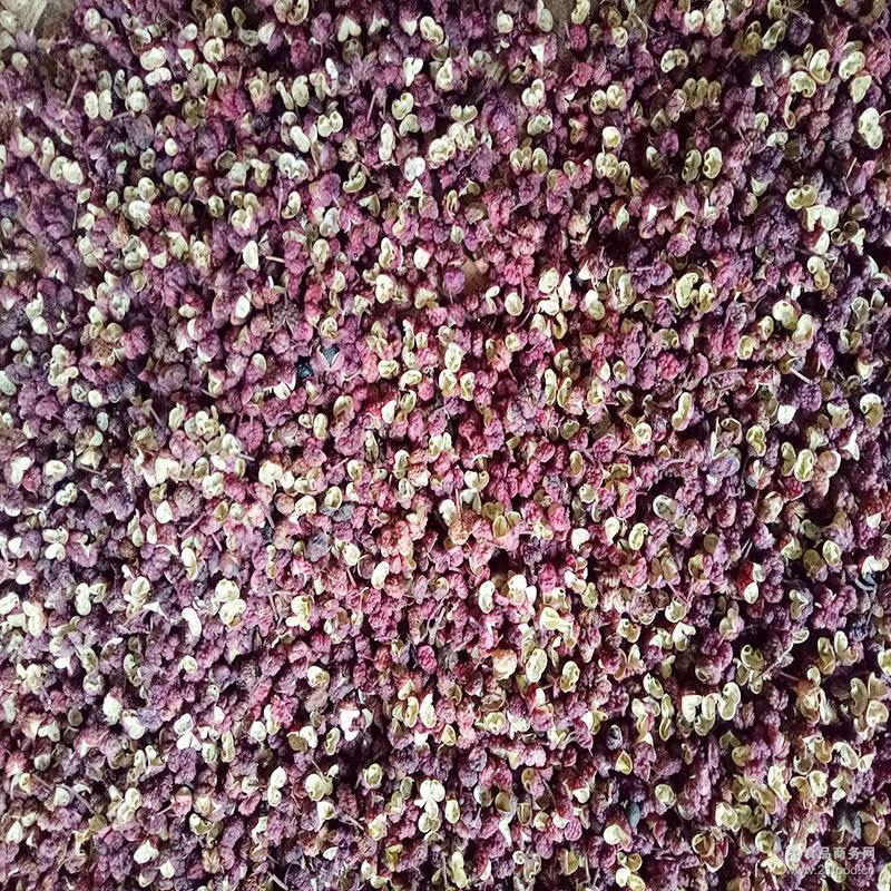 特级麻度高品质 干麻椒 特麻四川菜*调味品 供应大红袍红花椒