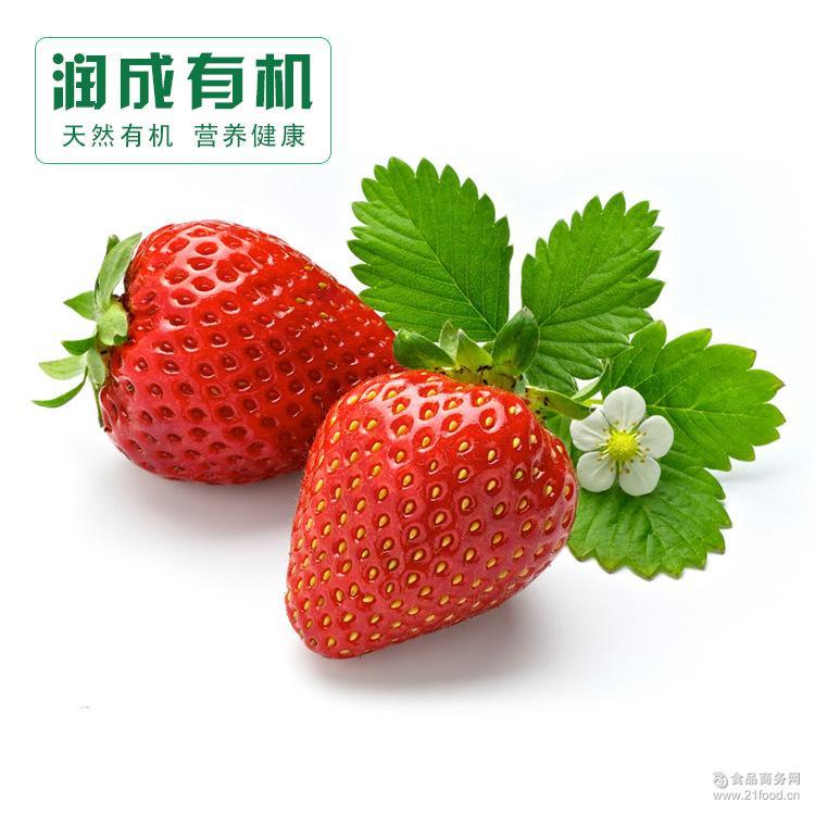盆栽蔬菜供应商 盆栽蔬菜批发商 价格表