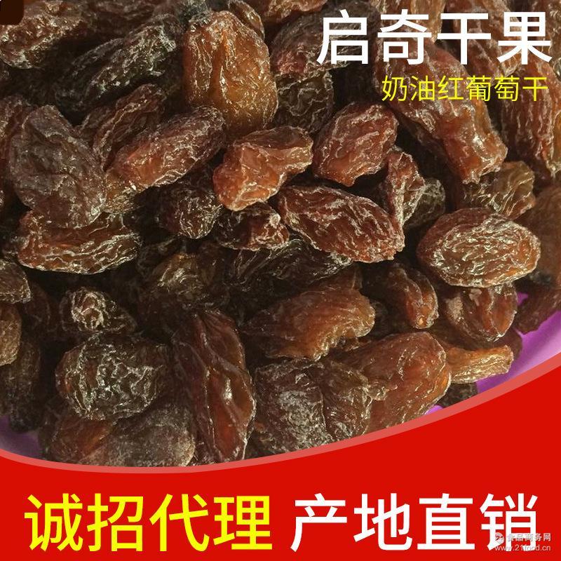吐鲁番葡萄干 新疆特大奶油红葡萄干 养颜补钙新货 量大优惠 供应