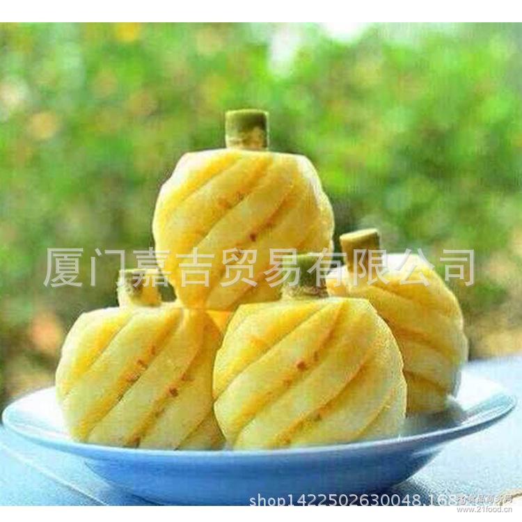 小菠萝 最甜最小的凤梨 新鲜保证 岛迷你小菠萝