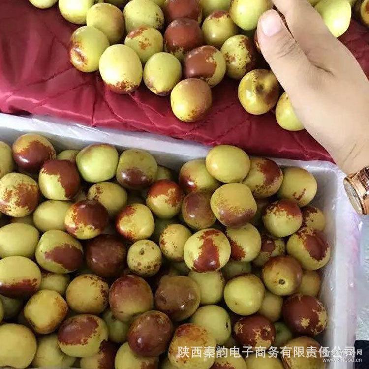 大荔小号冬枣4斤泡沫箱装香甜酥软 8月30号以后发货