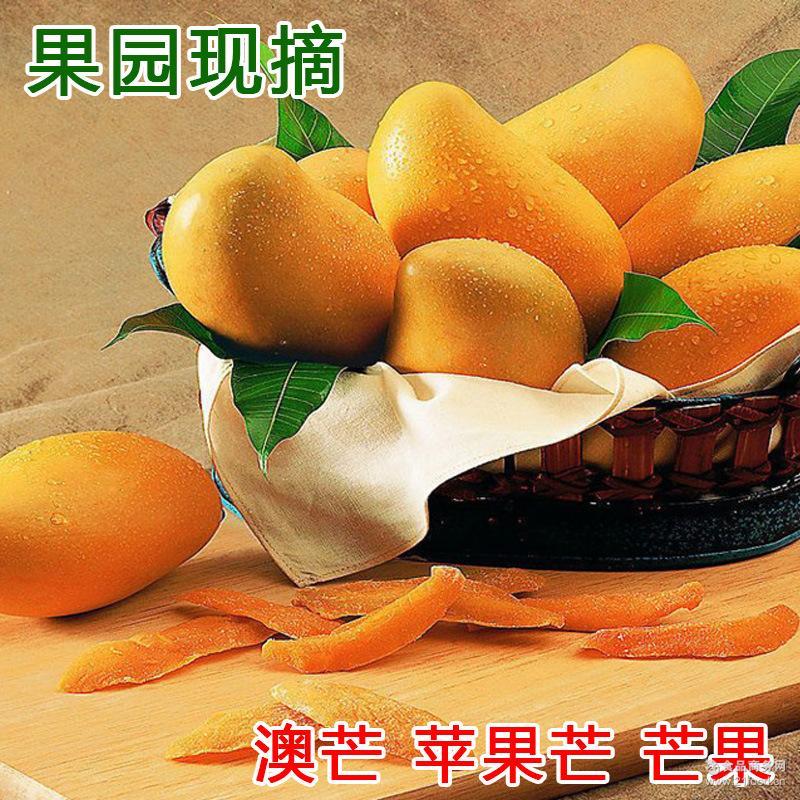 2016果园现摘新鲜水果澳芒苹果芒现摘发货包甜10斤一箱