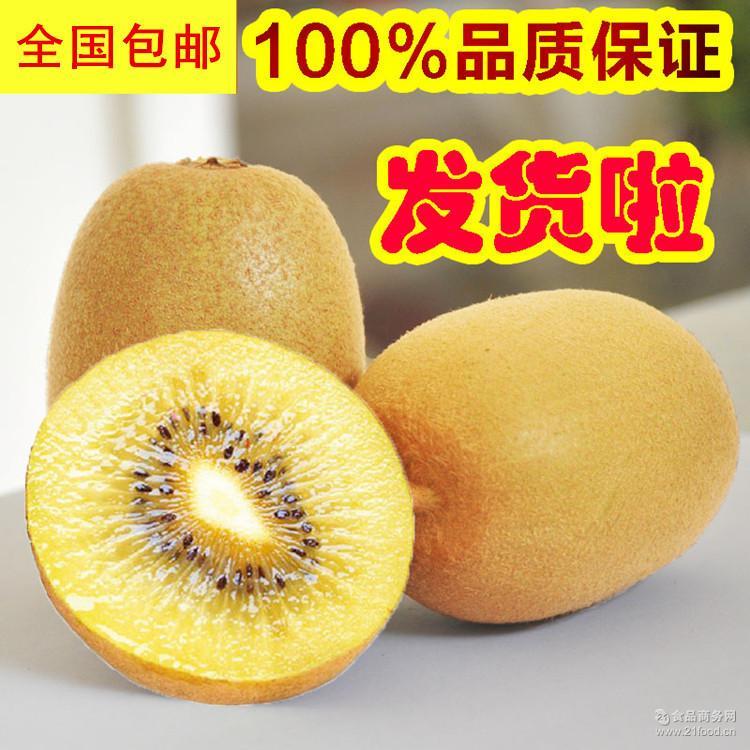 新鲜水果胜海南三亚贵妃金煌 特价包邮 广西百色芒果大小台农5斤
