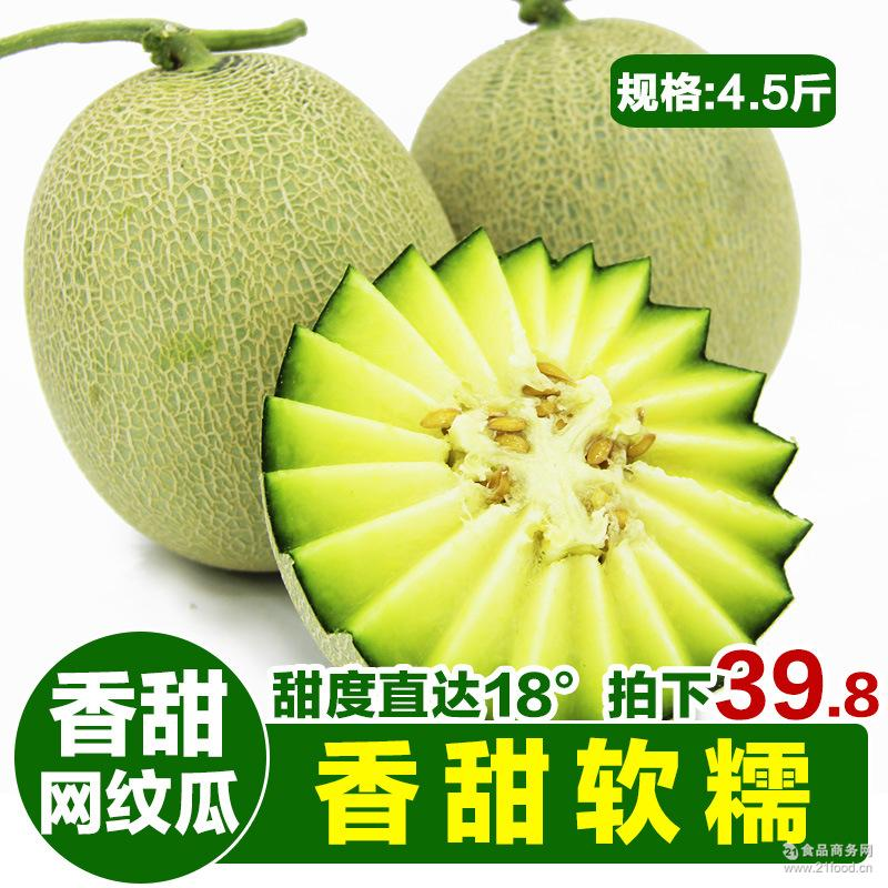 蜜瓜新鲜水果山东海阳网纹瓜香甜非哈密瓜甜瓜香瓜2个装4.5斤包邮