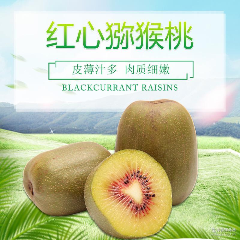 生鲜水果红心猕猴桃非进口现摘现发新鲜奇异果水果 5斤装大果