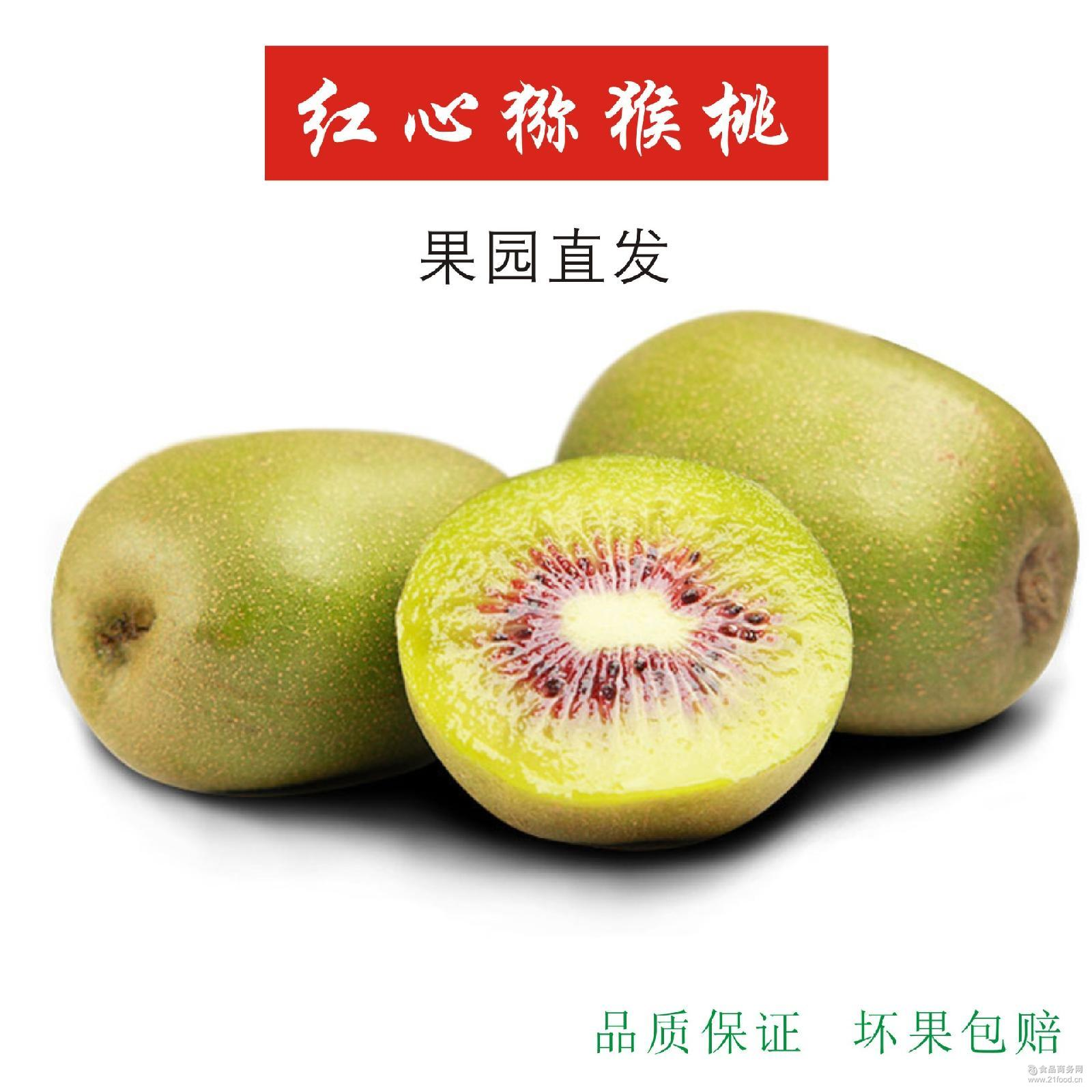 【500份特价】齐峰红心猕猴桃20颗 陕西眉县奇异果新鲜水果 现货