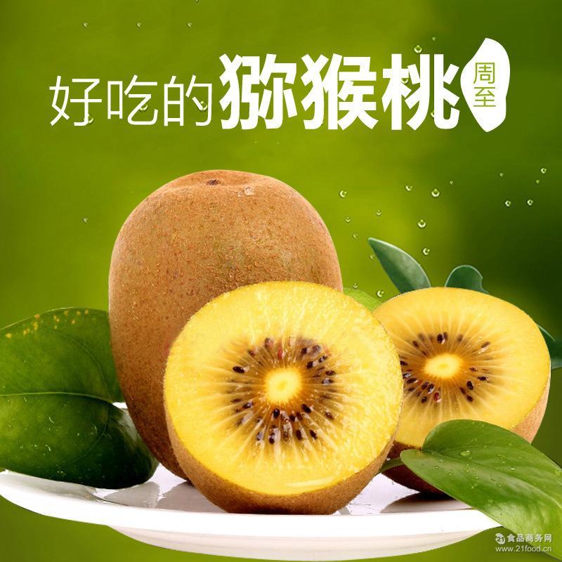 陕西秦岭周至猕猴桃弥胡桃华优黄金奇异果黄心猕猴桃新鲜水果徐香