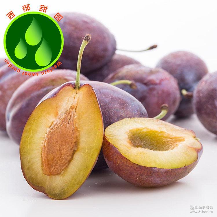 正宗新疆特产水果紫皮西梅新鲜果西域酸甜李子批发代发