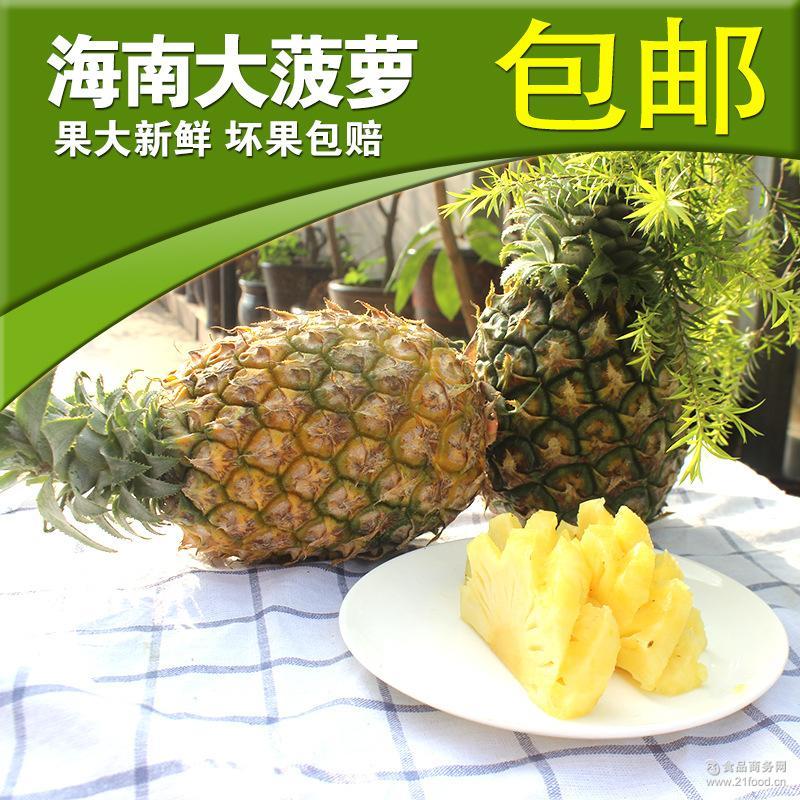 海南凤梨菠萝热带水果自然成熟脆甜多汁新鲜菠萝批发 一件代发