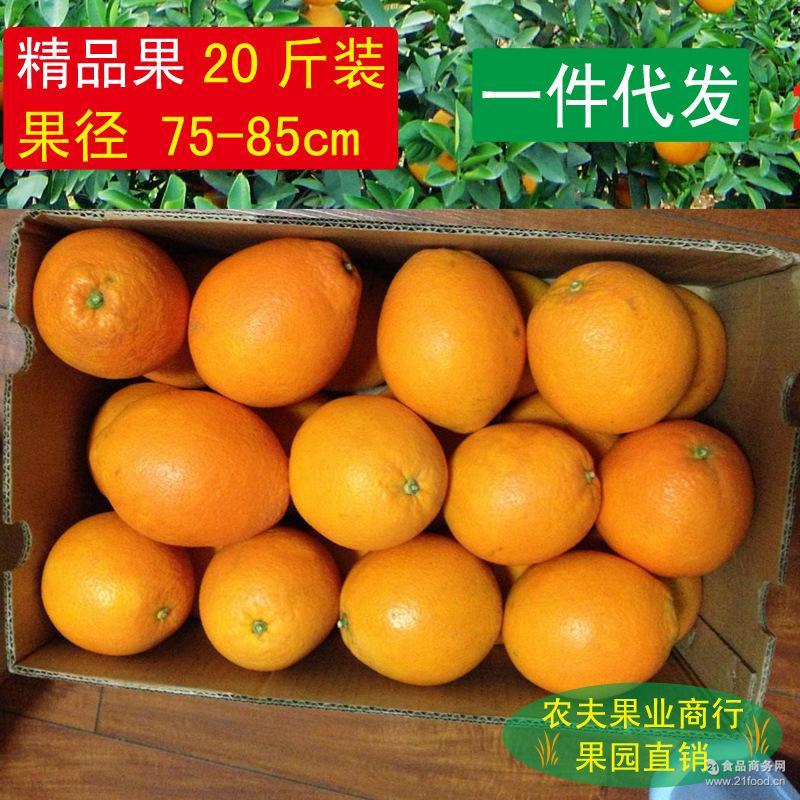 新鲜水果 赣南脐橙 一件代发 纯天然绿色美容食品20斤包邮 橙子