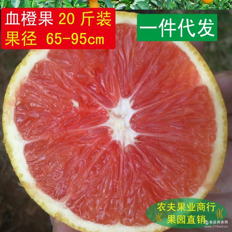 新鲜水果 纯天然绿色食品20斤 赣南血橙 红肉脐橙 橙子 一件代发