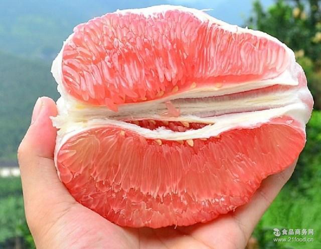 预售红心蜜柚沙田柚官溪蜜柚三红柚子新鲜水果11-12月份上市