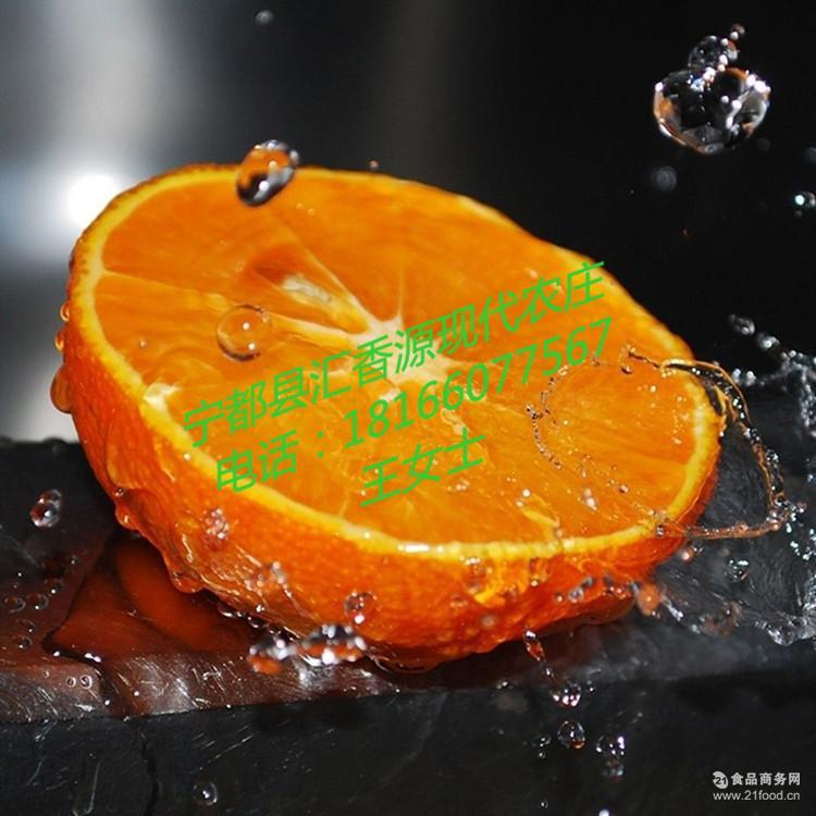 新鲜现摘水果 江西特产 淘宝热卖有机橙子2017当季赣南脐橙批发
