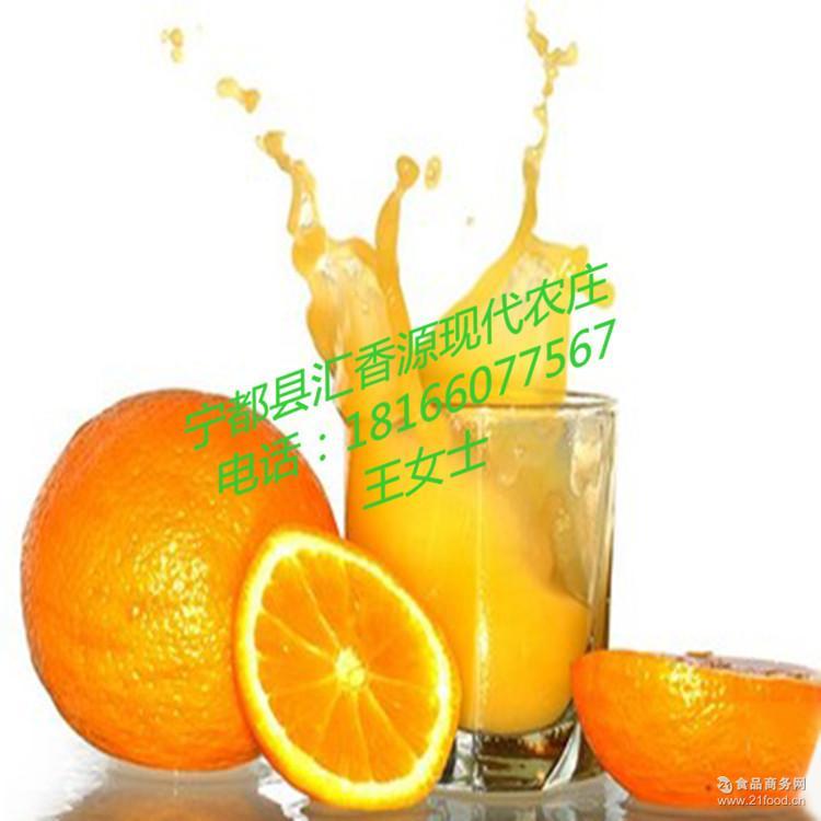 冬季热销水果果园直销 【常州赣南脐橙代售点】新鲜现摘有机橙子