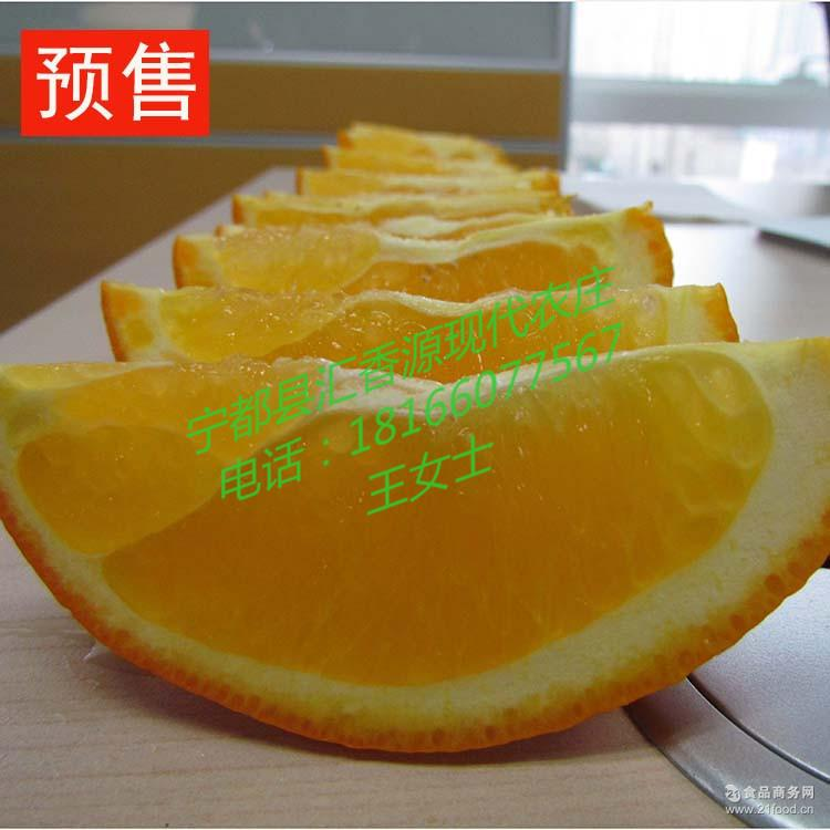 天津赣南脐橙代售点 火热现货清火橙子 冬季热销国产水果批发