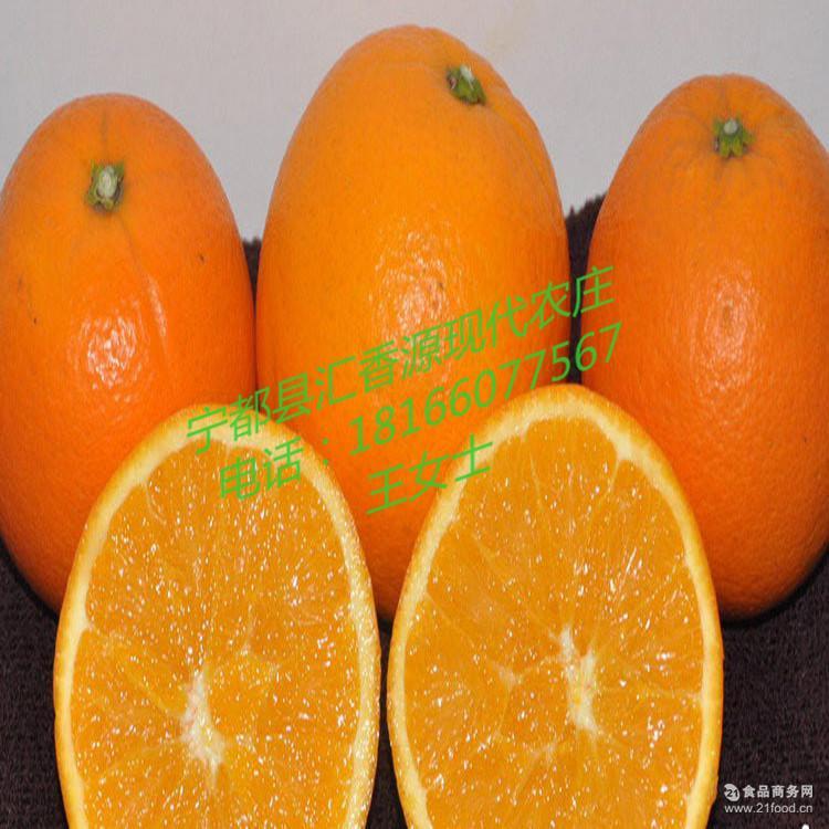 冬季国产水果火热现货产地直销 热销2016赣南脐橙 新鲜柑橘橙子