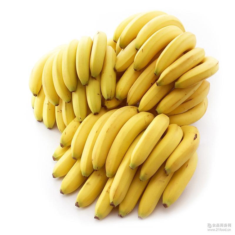 现摘新鲜海南香蕉 无公害孕妇水果 香蕉批发 热带水果一件代发