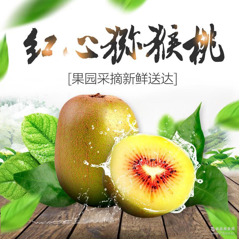 皮薄果肉多 一件代发 补充维生素 红心猕猴桃 沁易果业