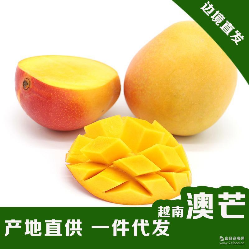 热带水果包邮 进口芒果 批发代发 5斤装澳芒 核小肉多 越南芒果
