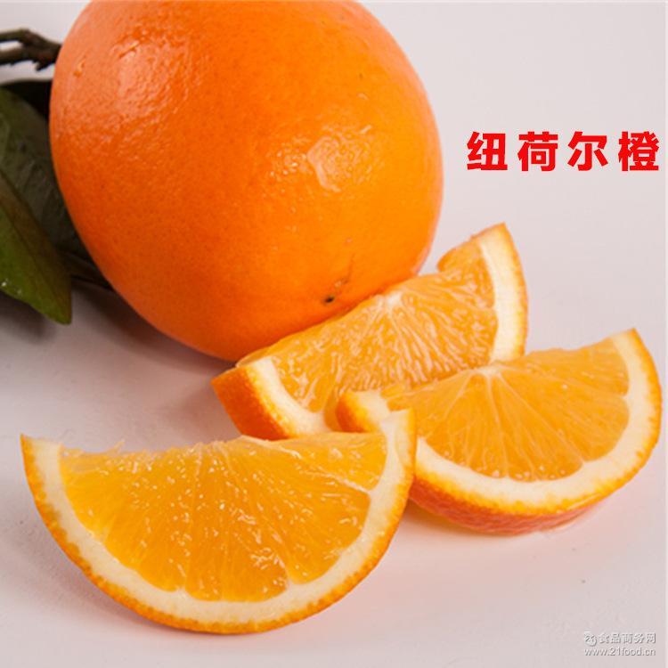 批发供应 新鲜纽荷尔橙子果肉多汁甜橙果园直供绿色环保纽荷尔橙