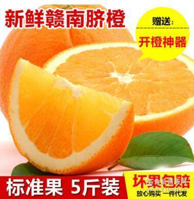 【预售】正宗赣南脐橙赣州特产高山甜橙子新鲜水果5斤标一件代发