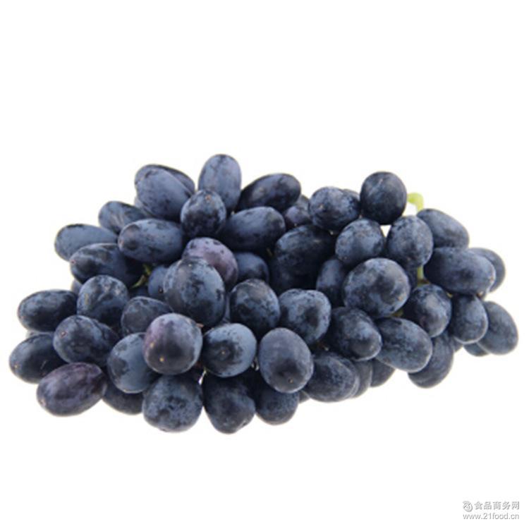 美国进口黑加仑无籽葡萄脆甜新鲜水果产地直供5斤顺丰包邮