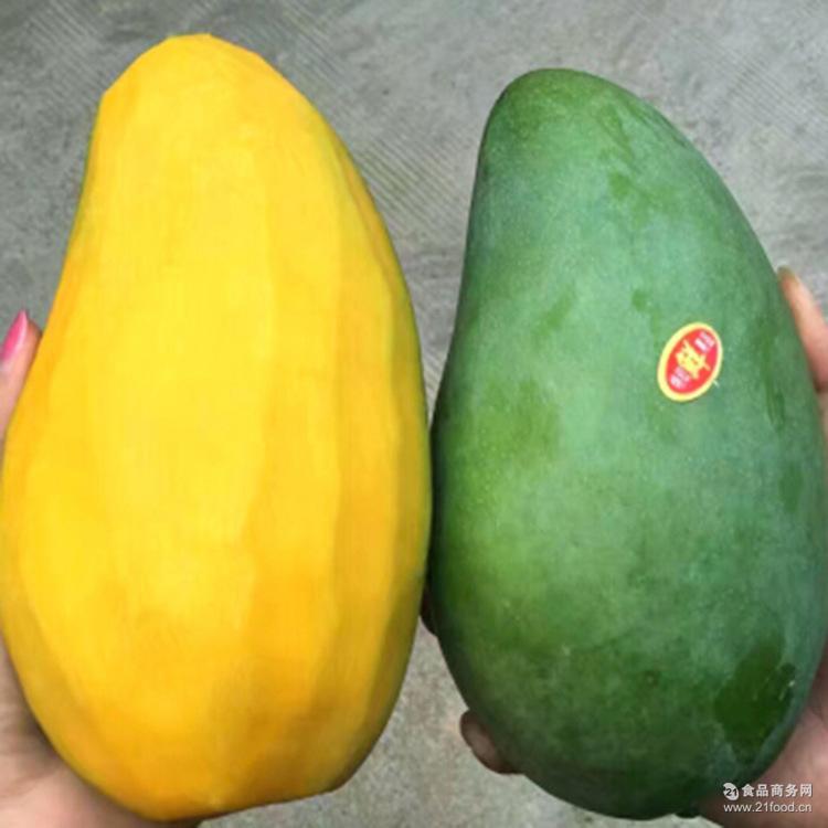 海南三亚大青芒果热带青皮新鲜水果现摘现发8斤微商一件代发包邮