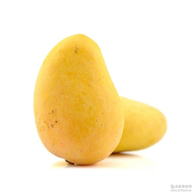 新鲜热带水果 芒果大量批发 广西台农芒 芒果果园直发 8斤装