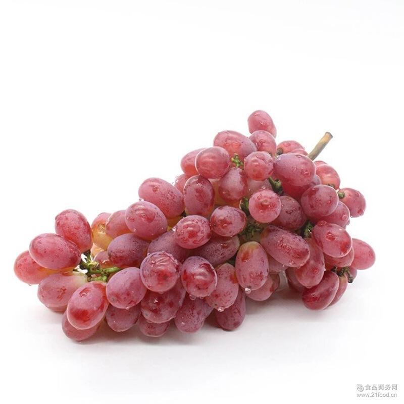 红提子新鲜葡萄甜脆爽1kg顺丰包邮 一件代发的
