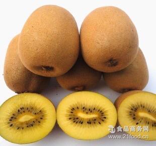 秦晟农业全国供应黄肉猕猴桃奇异果