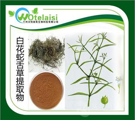 白花蛇舌草提取物   1公斤起订 质量保证