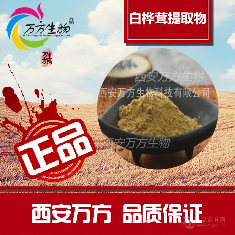 白桦茸菌粉5% 桦褐孔菌多糖 厂家现货