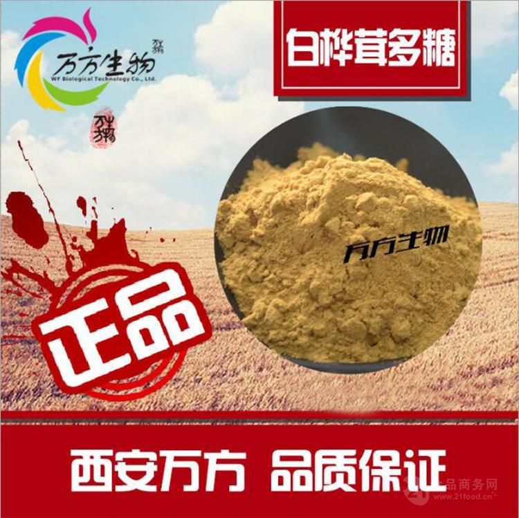白桦茸多糖30% 白桦茸提取物 品质保证 厂家直销