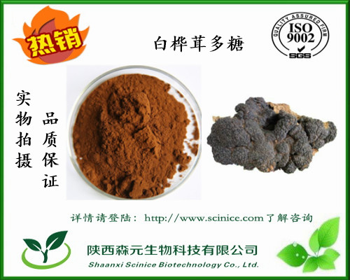 白桦茸多糖 50% 天然白桦茸提取物 白桦茸多糖厂家现货包邮