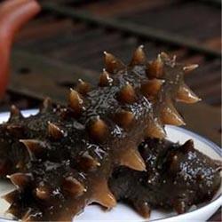 吃海参好处大连海参的营养价值和价钱