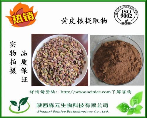 黄皮核提取物 10:1 黄皮核粉 黄皮粉 植体厂家比例萃取 热销中