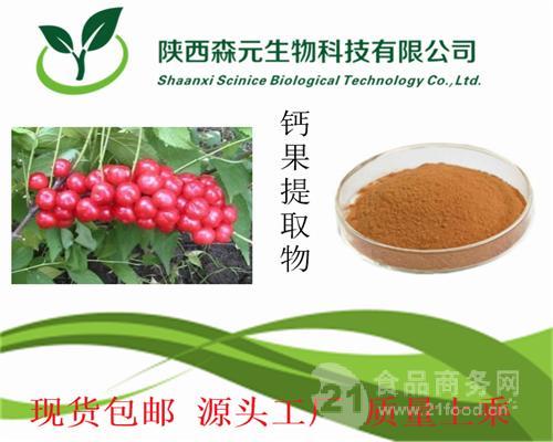 钙果提取物10:1 小李仁提取物 山梅子提取物 天然优质 现货热销