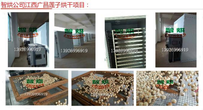 供应空气能莲子烘干机ZH-JN-HGJ03环保高效的选择