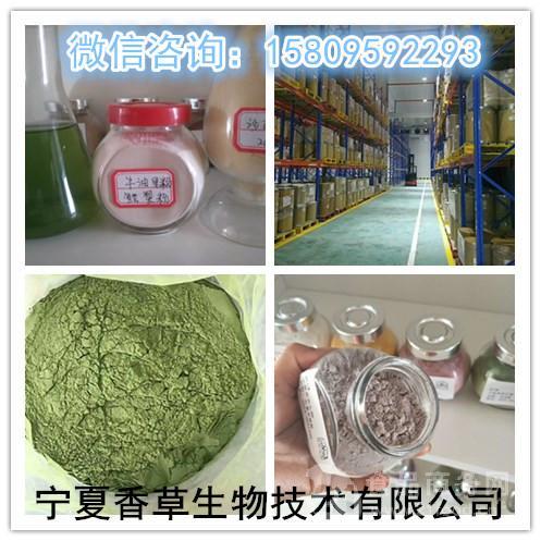 猕猴桃提取物10:1猕猴桃酵素粉奇异果果粉速溶粉厂家直销