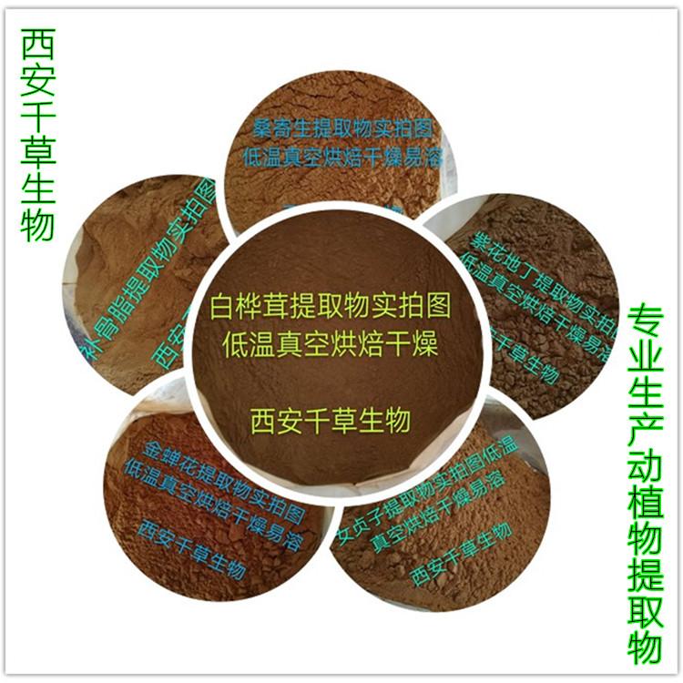 决明子提取物厂家生产天然提取物定做流浸膏