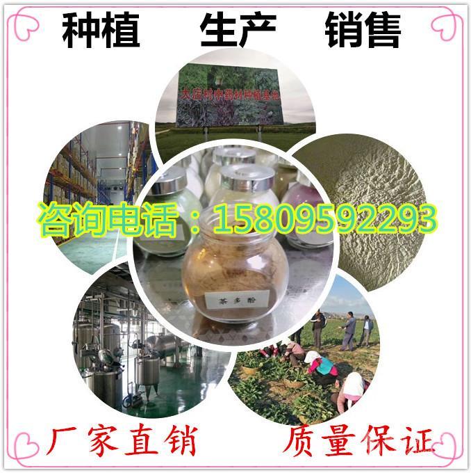 浩宇 批发番泻叶提取物番泻叶甙6%  8%