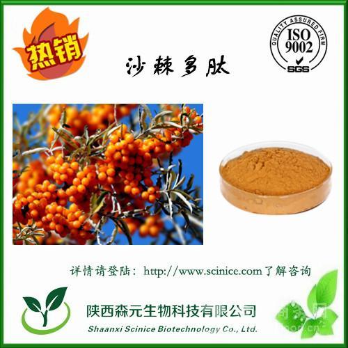 沙棘多肽 10%-98% 沙棘肽粉 沙棘提取物 工厂主推产品 热销