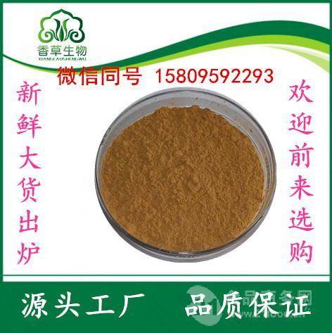 桑葚提取物10:1桑葚果粉桑葚速溶粉桑葚酵素粉价格
