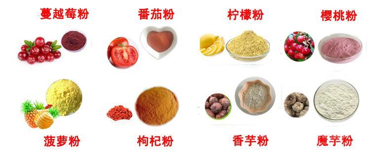 宁夏优质香瓜粉 香瓜速溶粉98% 香瓜浓缩汁粉香瓜酵素粉 厂家现货