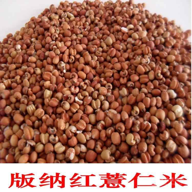西双版纳特产薏仁米 糯薏米 红薏米