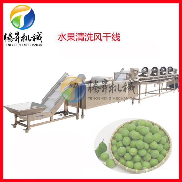 果蔬清洗风干线生产线生产厂家
