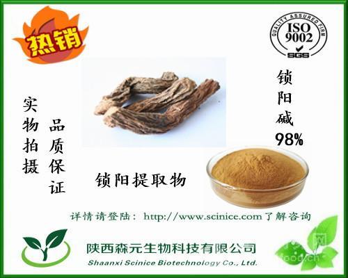 锁阳碱 98% 锁阳生物碱 天然萃取 锁阳提取物 厂家高含量现货