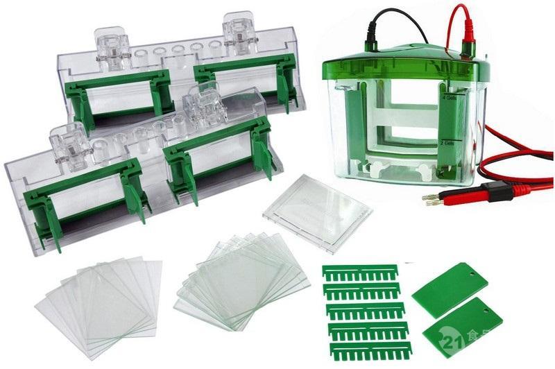 创萌LAB-EYE MP4-8006CN小型垂直凝胶电泳槽(一次可运行1-4块凝